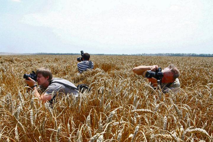 Краснодар, краснодарский творческий фотоцентр, выставка фоторепортеров Кубани